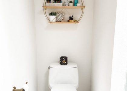 moist toilet tissue